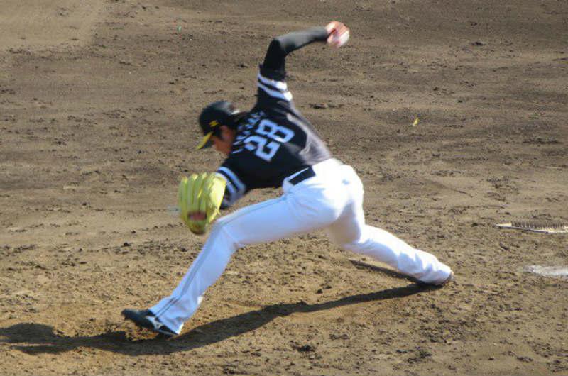 福岡ソフトバンクホークス・高橋礼選手のプロフィールや経歴まとめ!