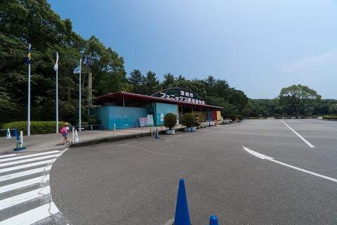 A6306797-min